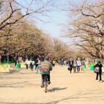 上野公園を歩いてみる