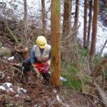 林業を考える